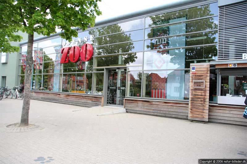 Odense Zoo adresse bare damer billeder